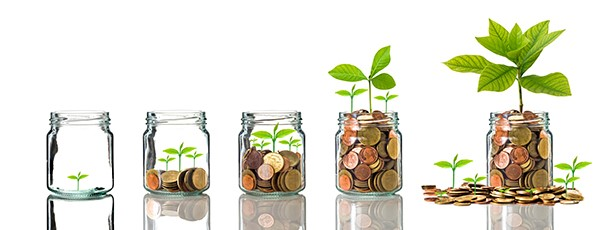 Choose the right RRSPs to help you grow your money until your retirement